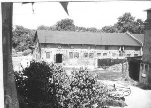 Rinderstall